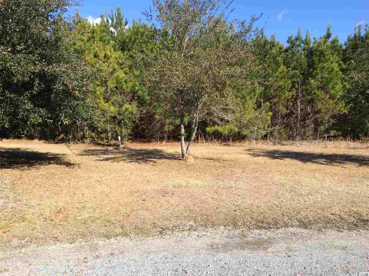 Acreage for Sale at Lot 1 Belleflower Way Lot 1 Belleflower Way Georgetown, South Carolina 29440 United States