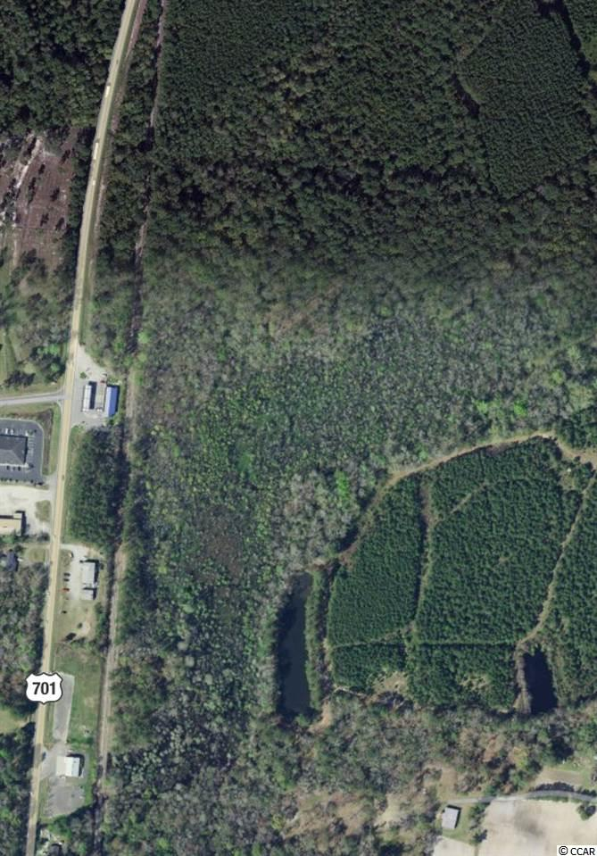 Additional photo for property listing at TBD Wise Road TBD Wise Road Conway, 南卡罗来纳州 29526 美国