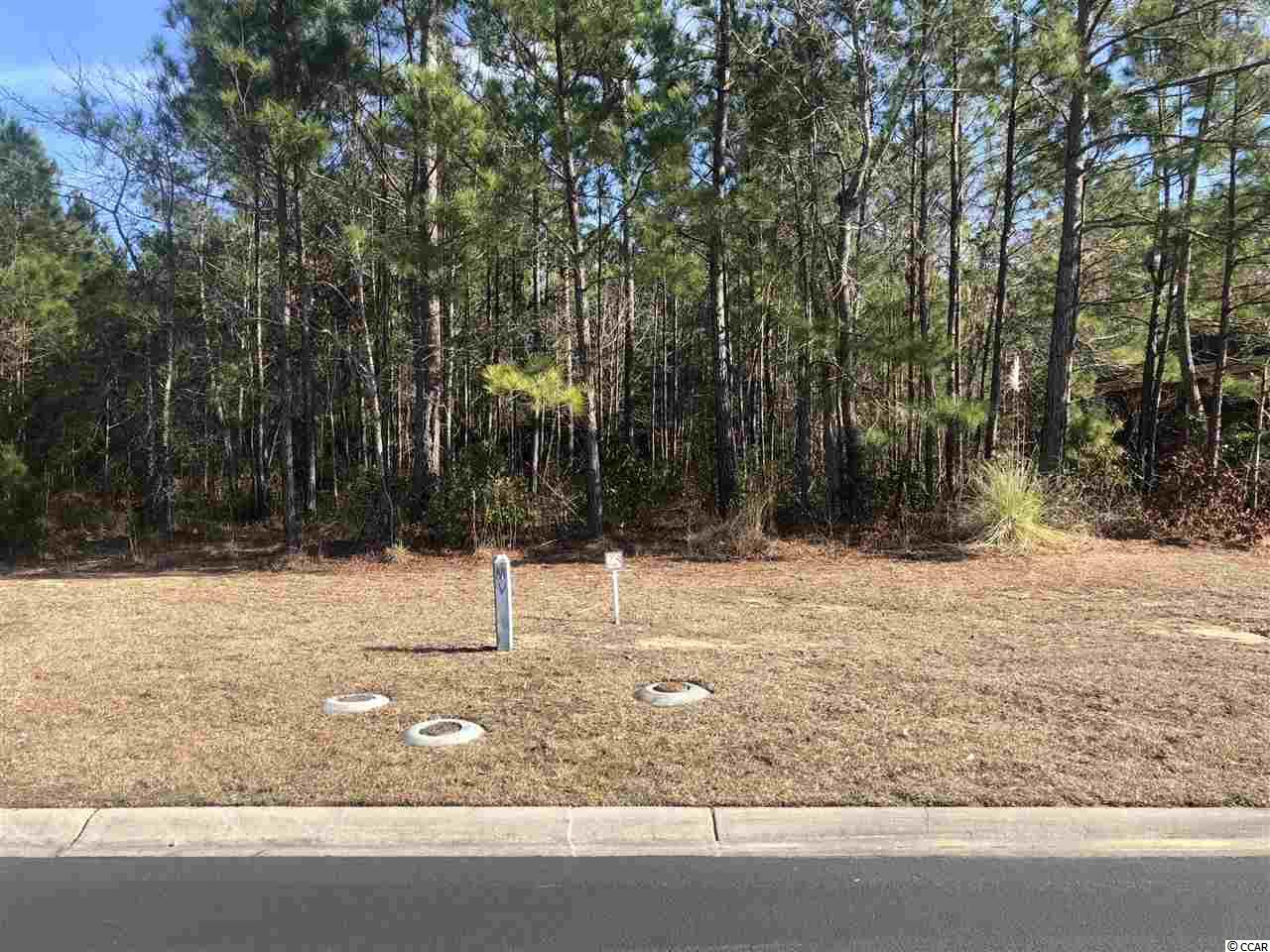 Land for Sale at TBD Springtime Court TBD Springtime Court Murrells Inlet, South Carolina 29576 United States