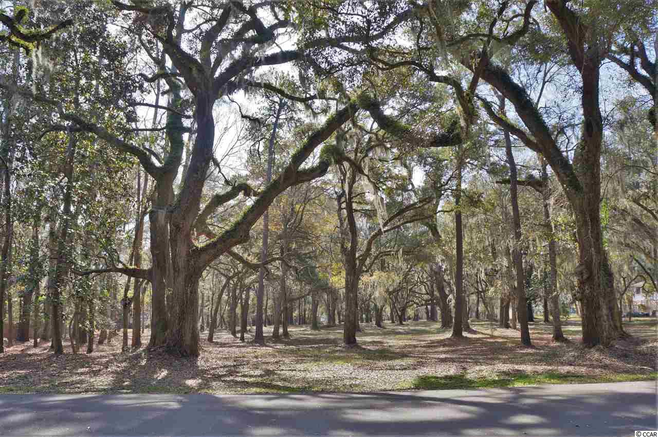 Land for Sale at 793 Tuckers Road 793 Tuckers Road Pawleys Island, South Carolina 29585 United States