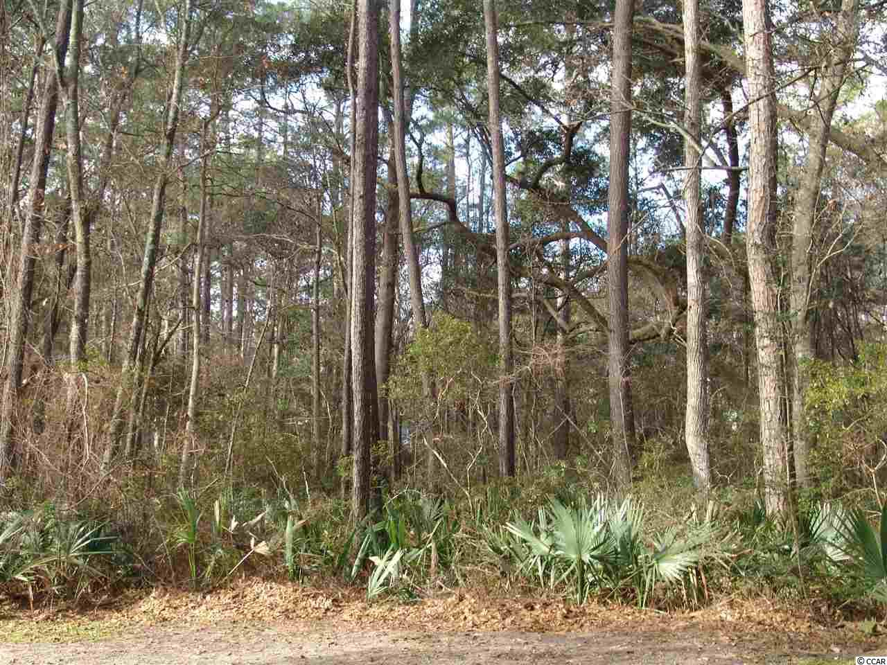 Land for Sale at 391 Old Carriage Loop 391 Old Carriage Loop Georgetown, South Carolina 29440 United States