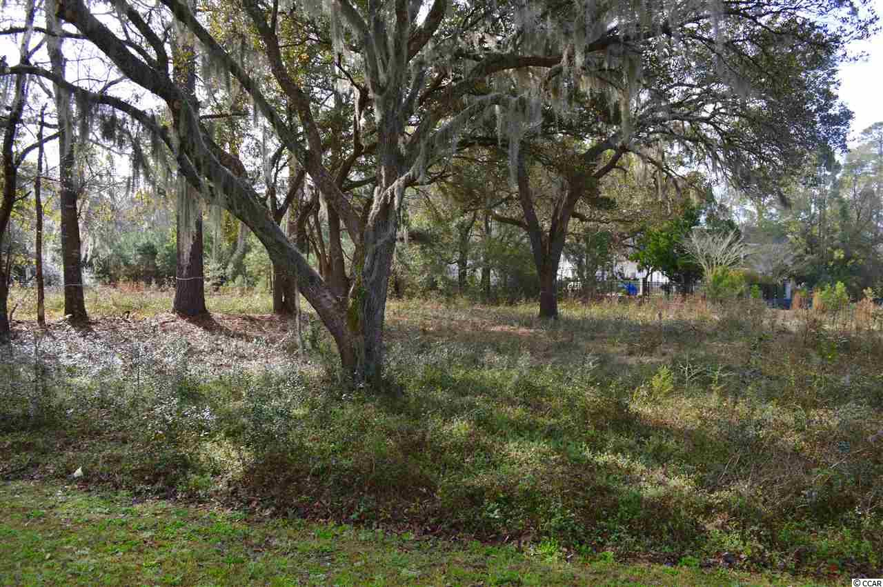 Land for Sale at 177 All Saints Loop 177 All Saints Loop Pawleys Island, South Carolina 29585 United States