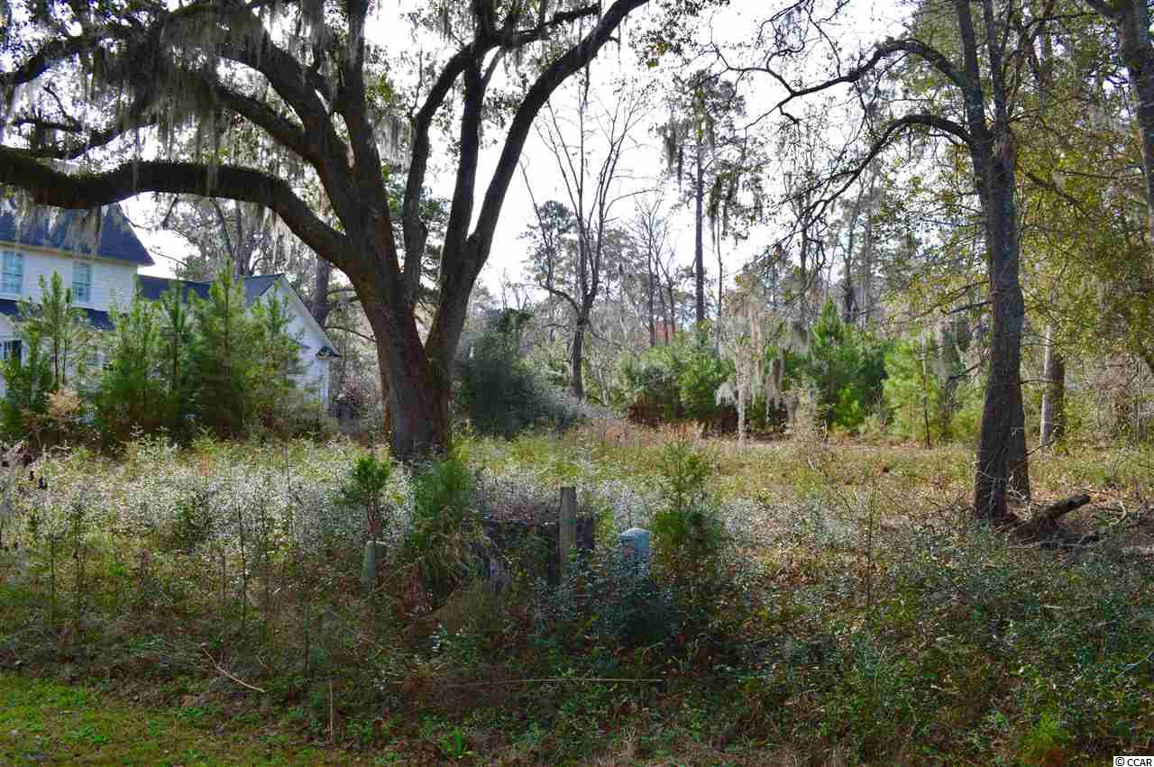 Additional photo for property listing at 177 All Saints Loop 177 All Saints Loop Pawleys Island, South Carolina 29585 United States