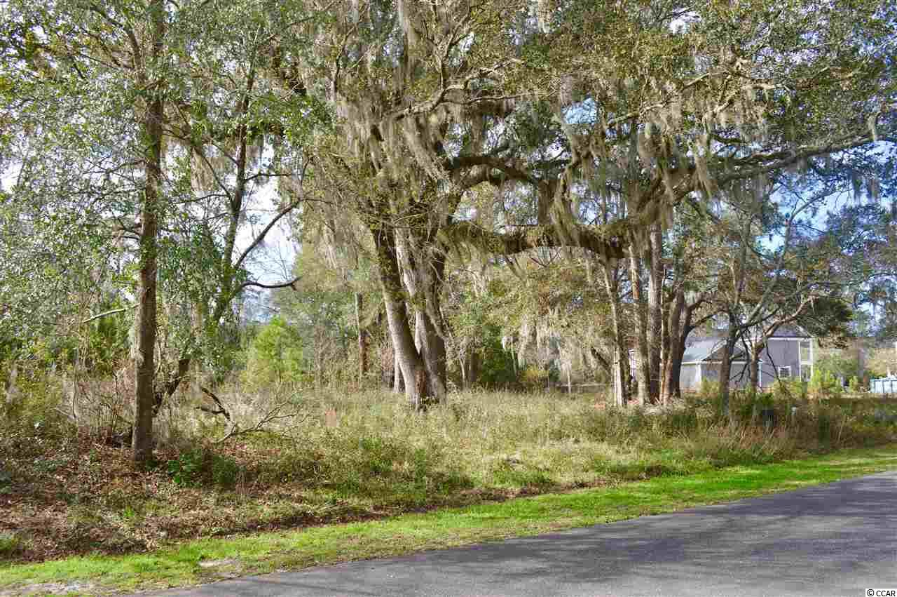 Additional photo for property listing at 189 All Saints Loop 189 All Saints Loop Pawleys Island, South Carolina 29585 United States