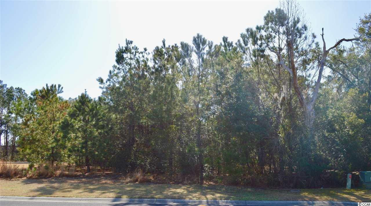 Land for Sale at 13 Colony Club Drive 13 Colony Club Drive Georgetown, South Carolina 29440 United States