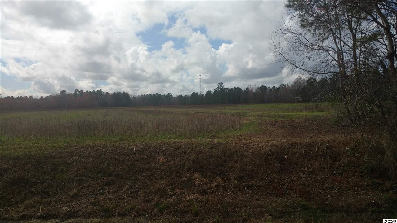 Acreage for Sale at Hwy 9 Hwy 9 Longs, South Carolina 29568 United States