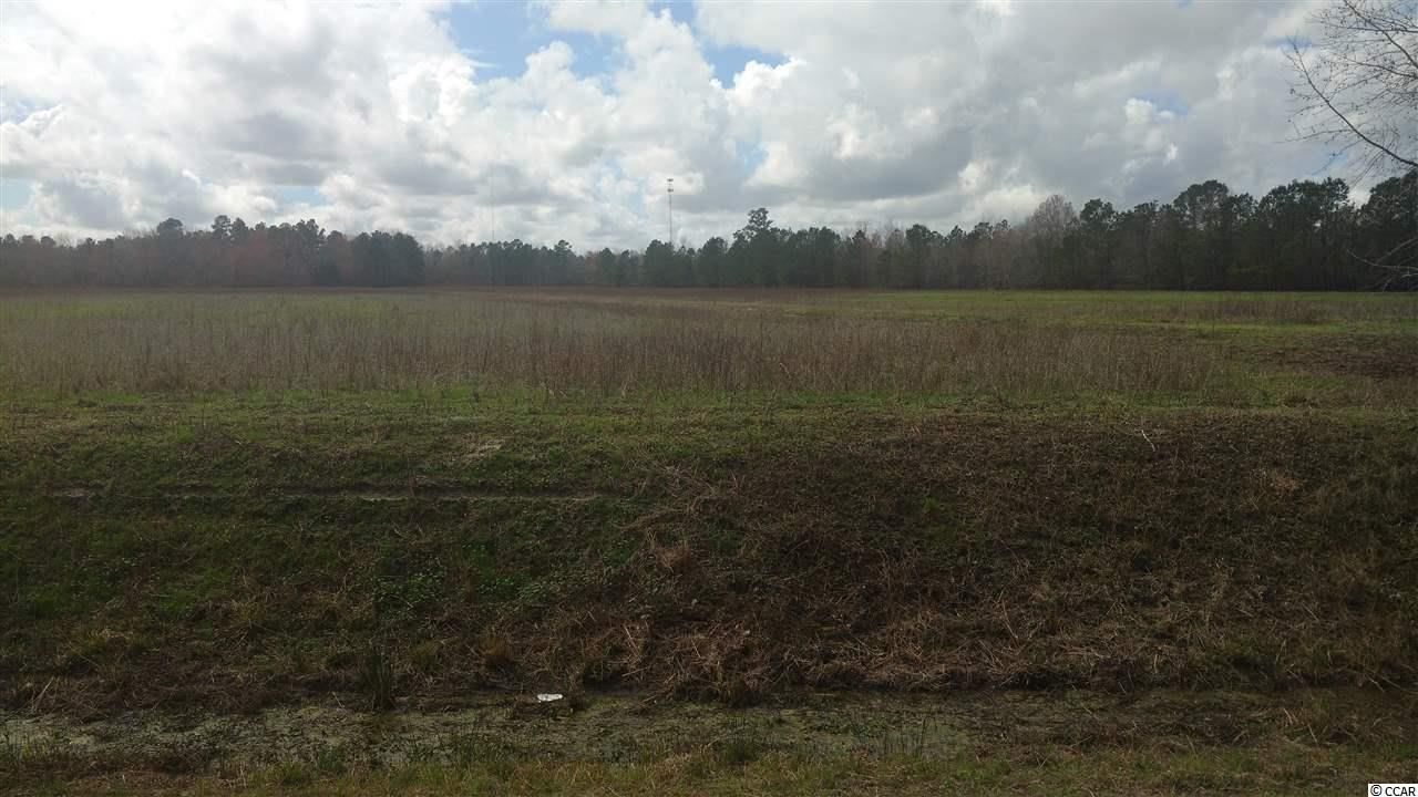 Additional photo for property listing at Hwy 9 Hwy 9 Longs, South Carolina 29568 United States
