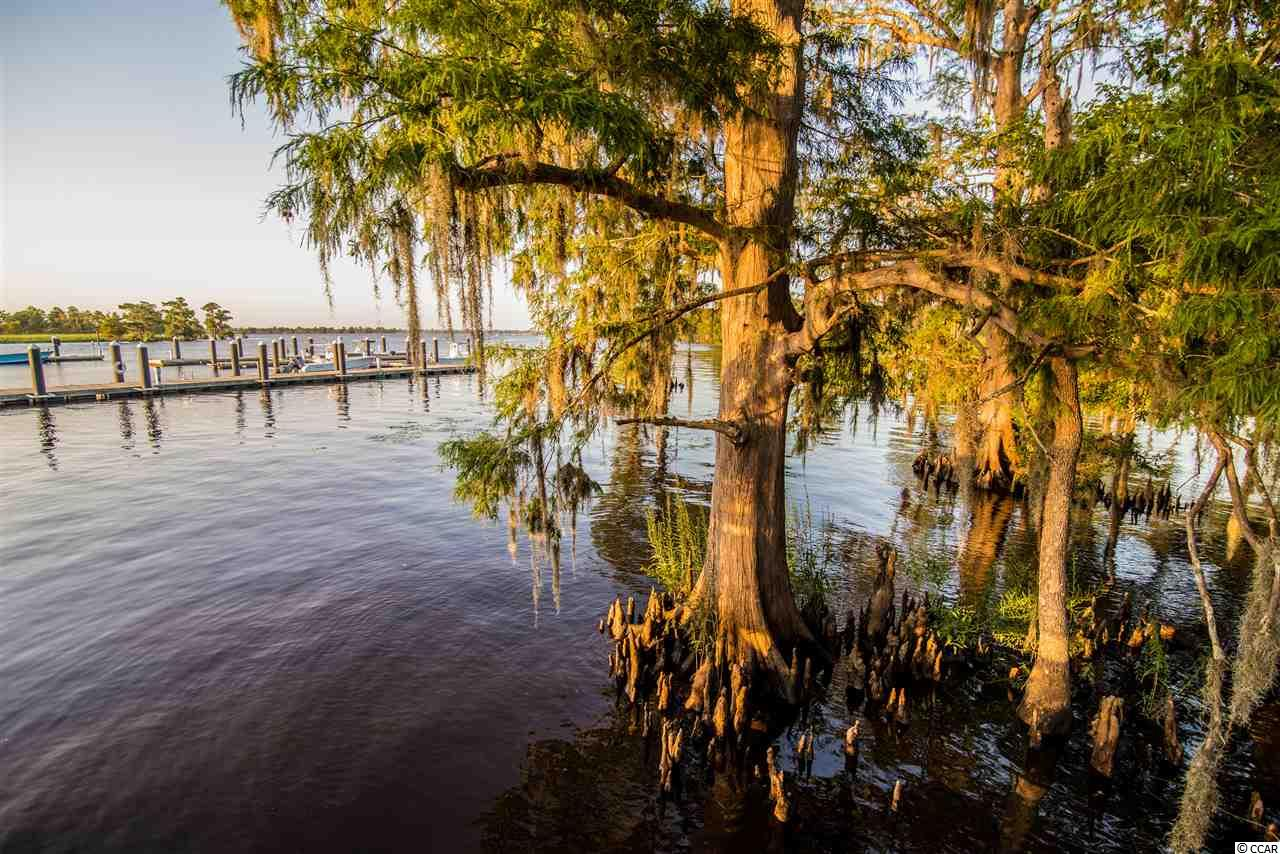 Additional photo for property listing at 417 Rice Bluff Road 417 Rice Bluff Road Pawleys Island, South Carolina 29585 United States
