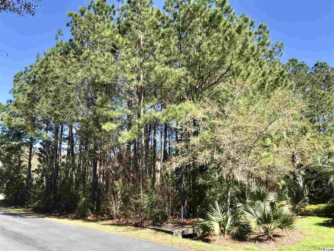 Land for Sale at 232 Olde Canal Loop, Lot 246 232 Olde Canal Loop, Lot 246 Pawleys Island, South Carolina 29585 United States