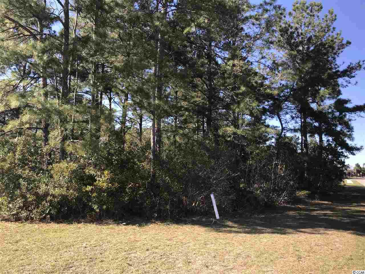 Myrtle Beach Homes for Sale -  Waterfront,  Lot 29 Carsten Ct.