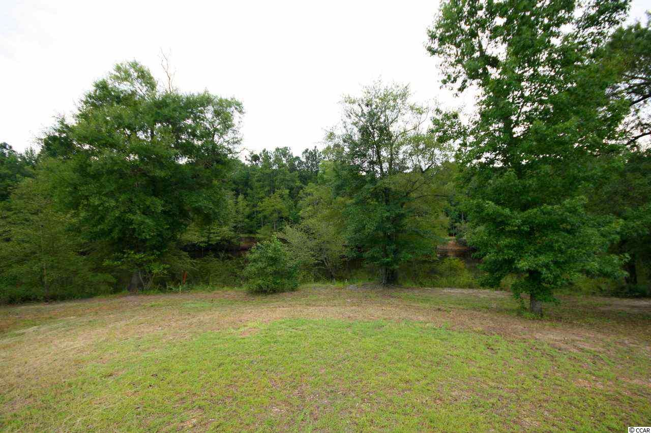 Land for Sale at 144 Lure Court 144 Lure Court Conway, South Carolina 29526 United States