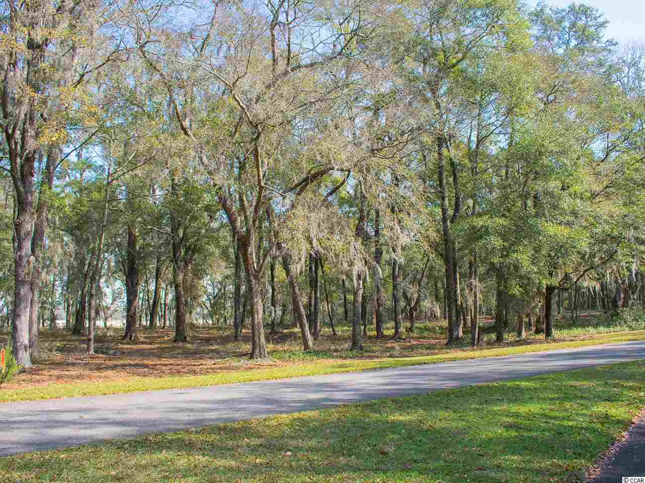 LOT 4 Rice Bluff Rd., Pawleys Island, South Carolina