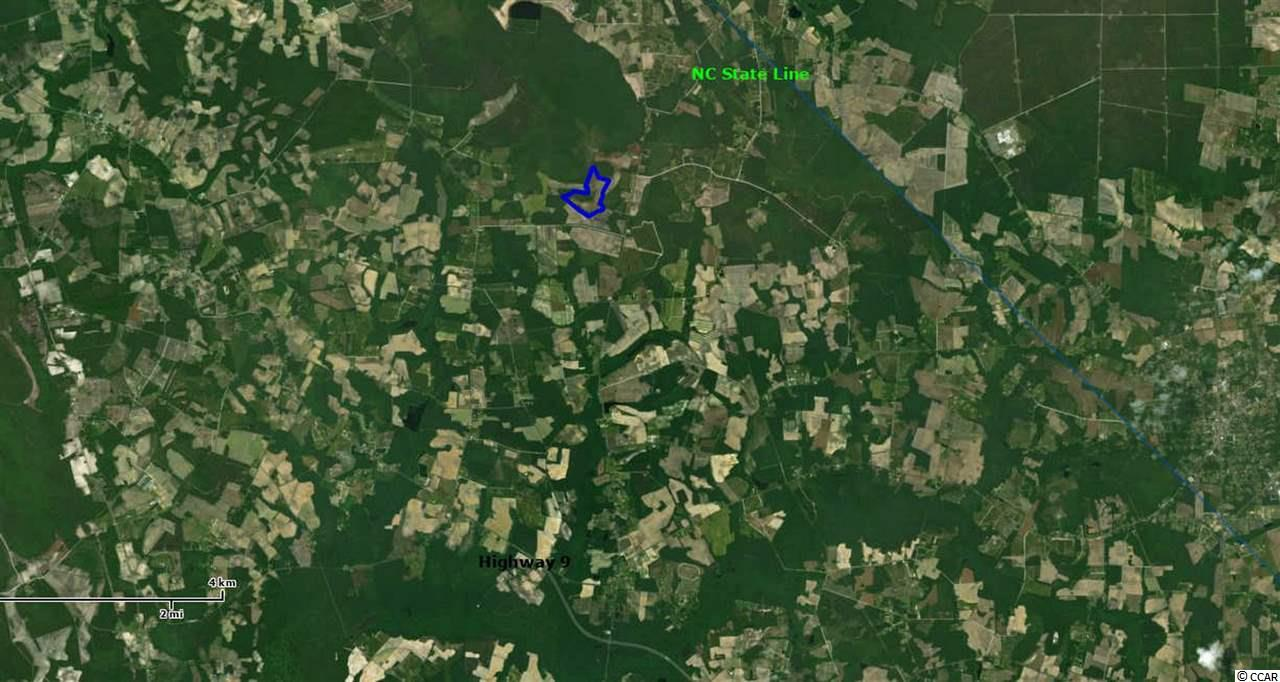 Farm for Sale at 6150 Tampa Lane 6150 Tampa Lane Green Sea, South Carolina 29545 United States