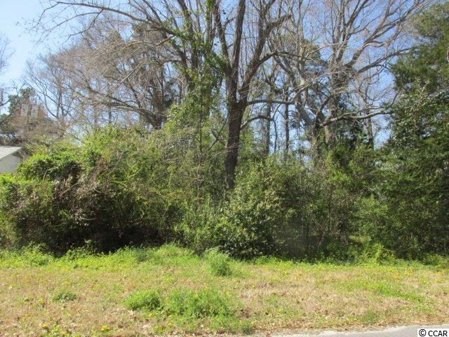 Land for Sale at 513 N 3RD AVENUE 513 N 3RD AVENUE Surfside Beach, South Carolina 29575 United States