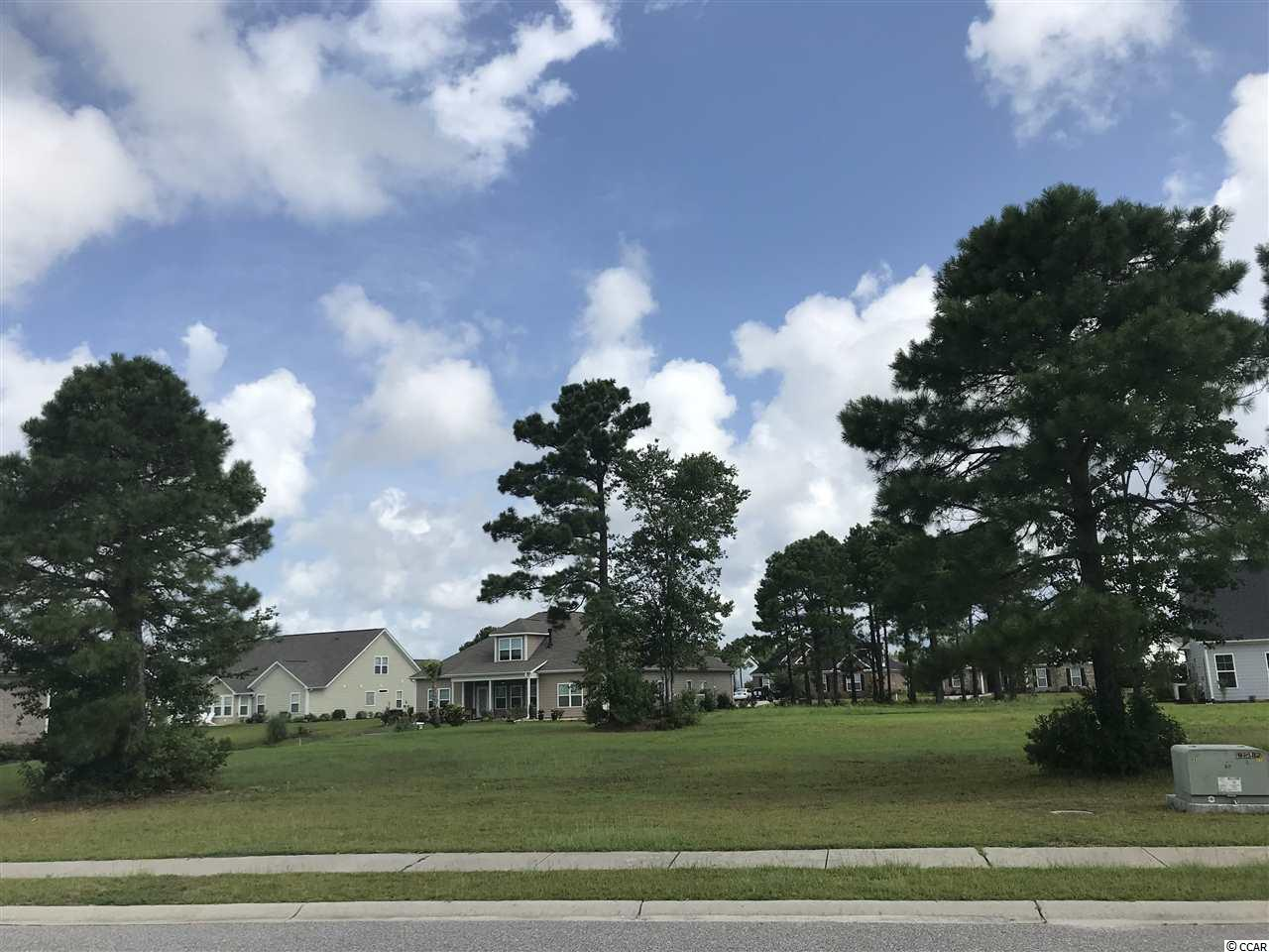 920 Desert Wheatgrass Dr., one of homes for sale in Carolina Forest