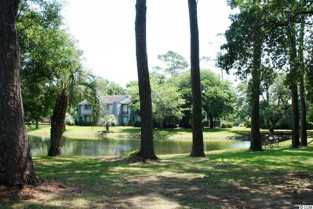 Real estate for sale at  #9 Salt Marsh Cove - Pawleys Island, SC