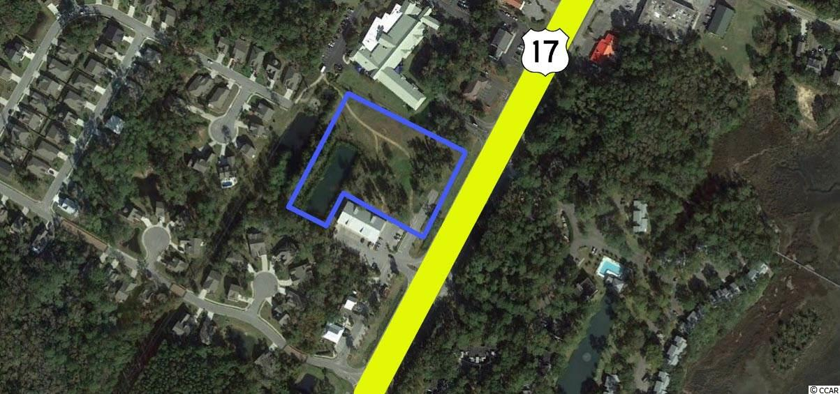 TBD Ocean Hwy., one of homes for sale in Pawleys Island