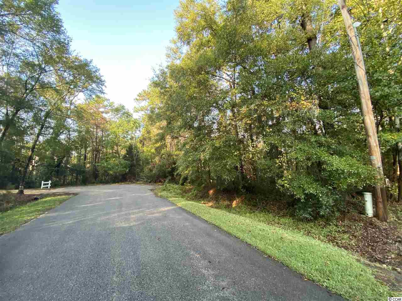 425 Otter Run Rd., Pawleys Island in Georgetown County, SC 29585 Home for Sale