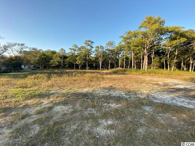 Lot A Jacks Circle Rd., North Myrtle Beach in Horry County, SC 29582 Home for Sale
