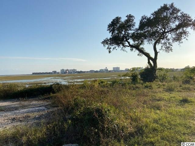 Lot B Jacks Circle Rd., North Myrtle Beach in Horry County, SC 29582 Home for Sale