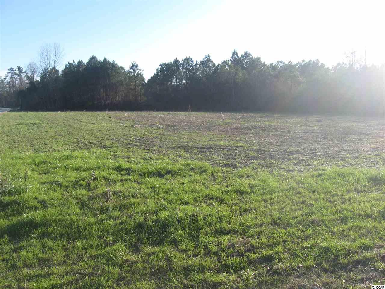Land for Sale at Lot 5 TBD Lovett Lane Lot 5 TBD Lovett Lane Green Sea, South Carolina 29545 United States