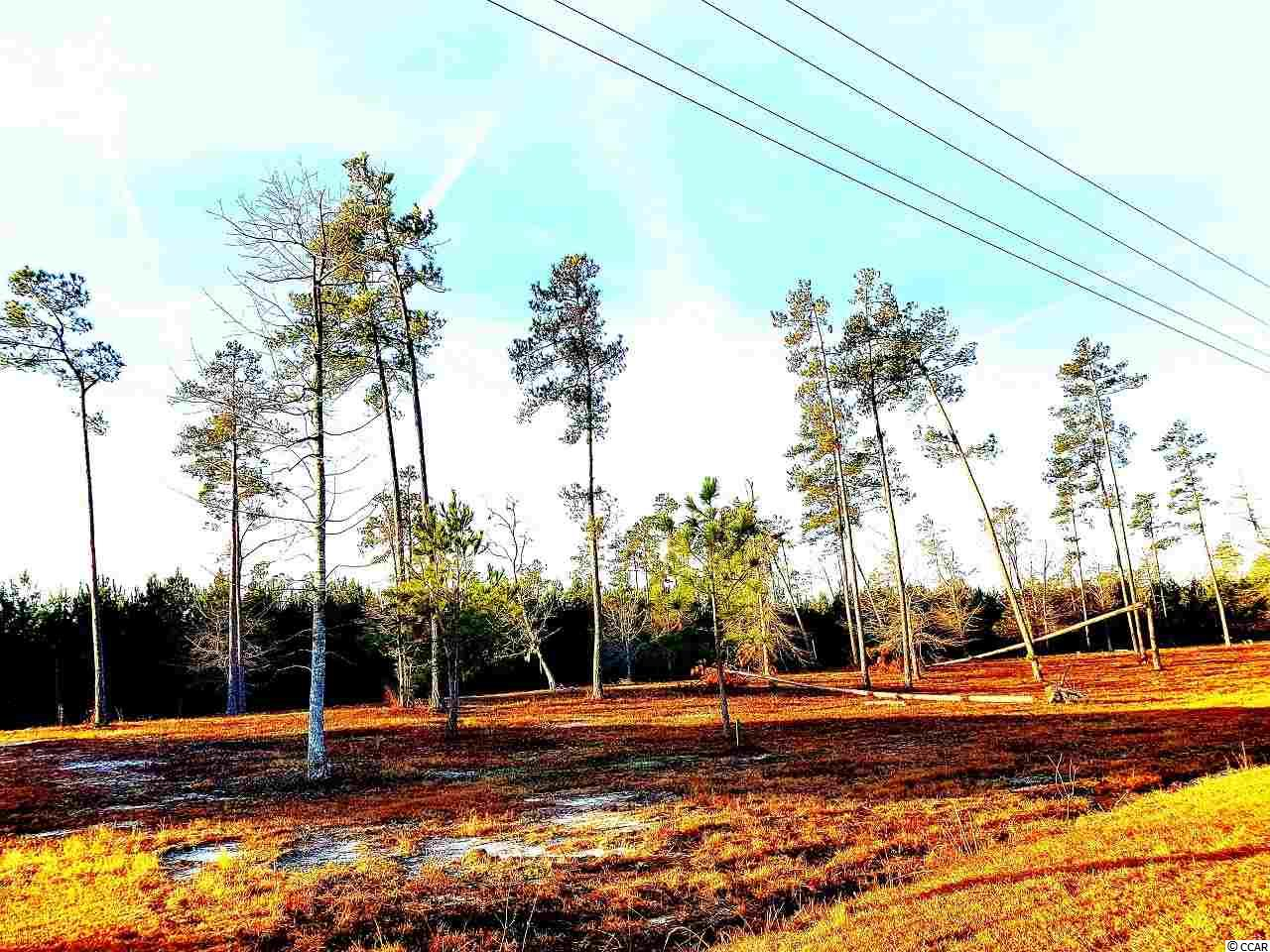 Land for Sale at TBD Pisgah Church Road TBD Pisgah Church Road Galivants Ferry, South Carolina 29544 United States