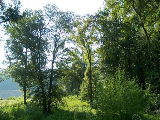 481  Living Waters Great Falls, SC 29055