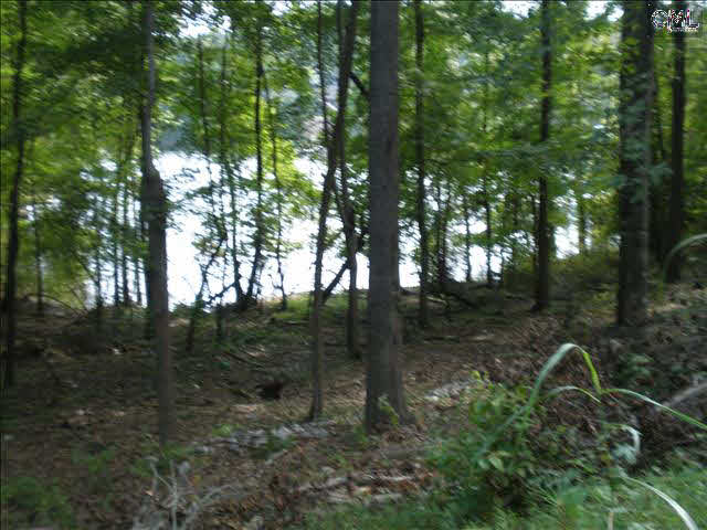 1124  Woodside Winnsboro, SC 29180
