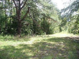 Syrup Mill Ridgeway, SC 29130