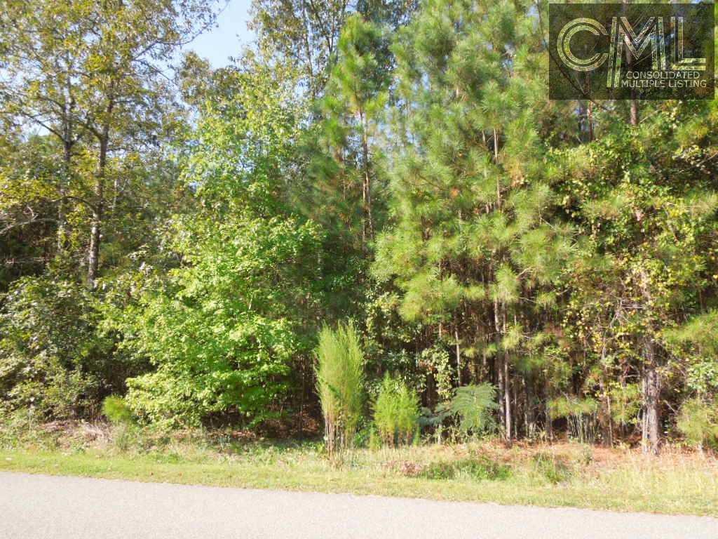 787  White Pines Camden, SC 29020