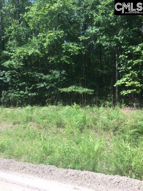 1460  Meadowview Lugoff, SC 29078