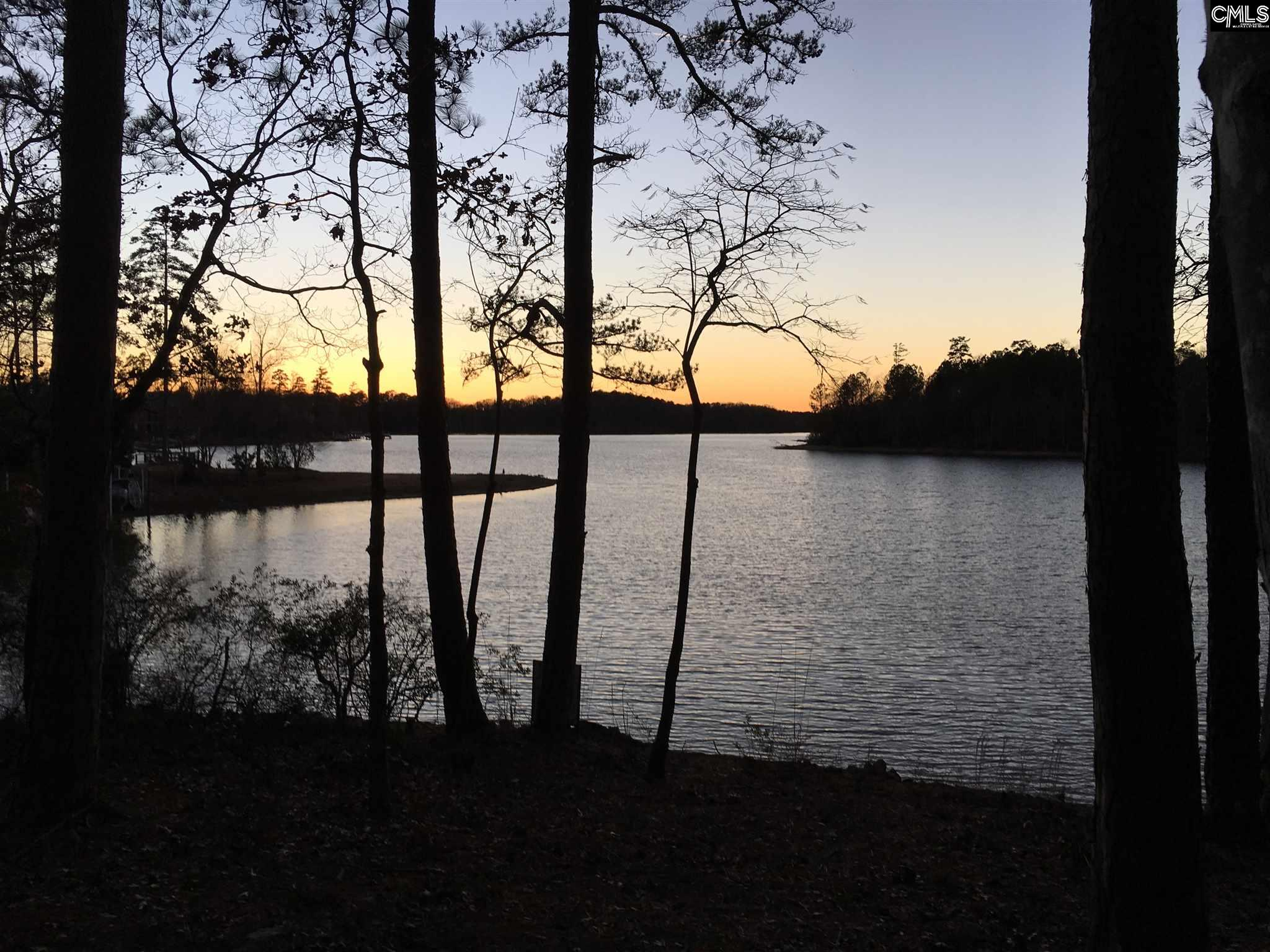 444  Lookover Pointe #lot #25 Chapin, SC 29036