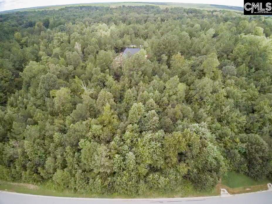 320  Creek Ridge Blythewood, SC 29016