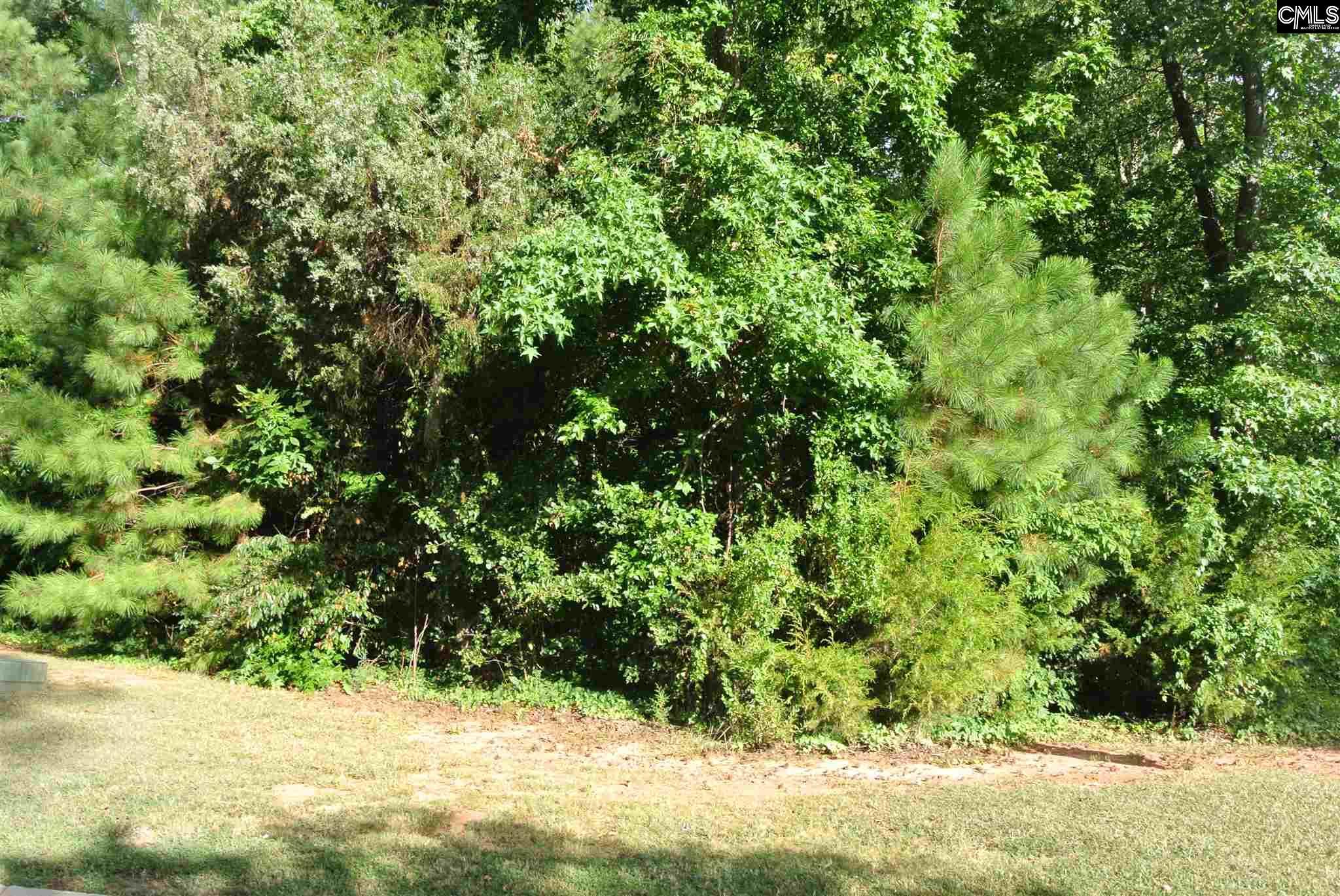 113  Cherokee Shores Dr #lot 2 Lexington, SC 29072