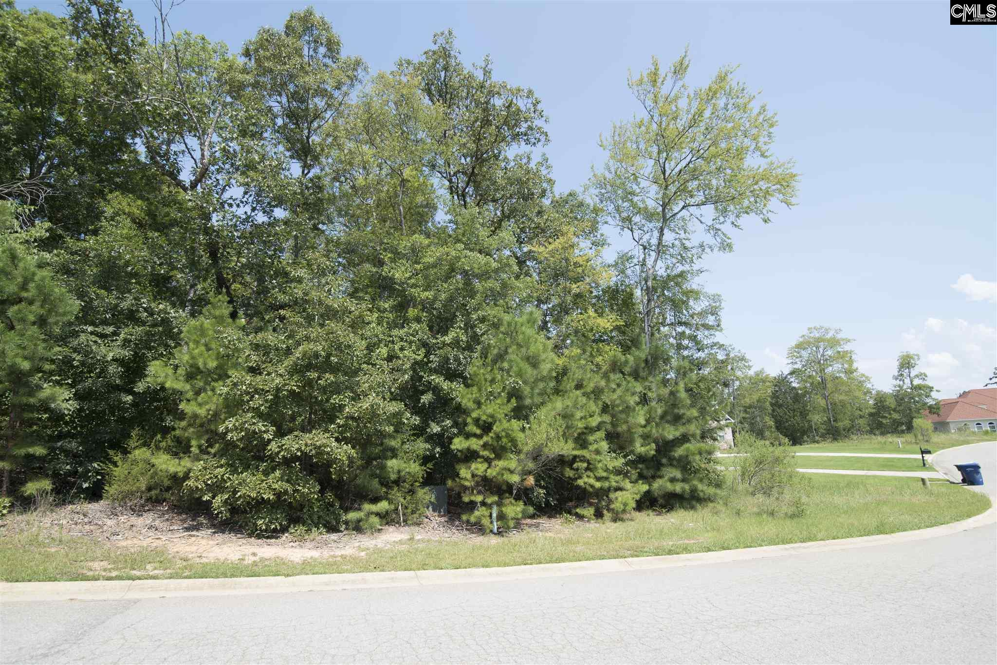141  Summer Bay Chapin, SC 29036
