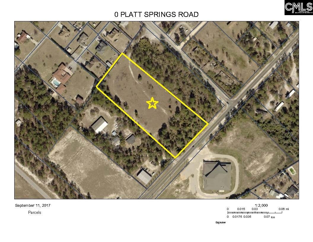 Platt Springs Lexington, SC 29073