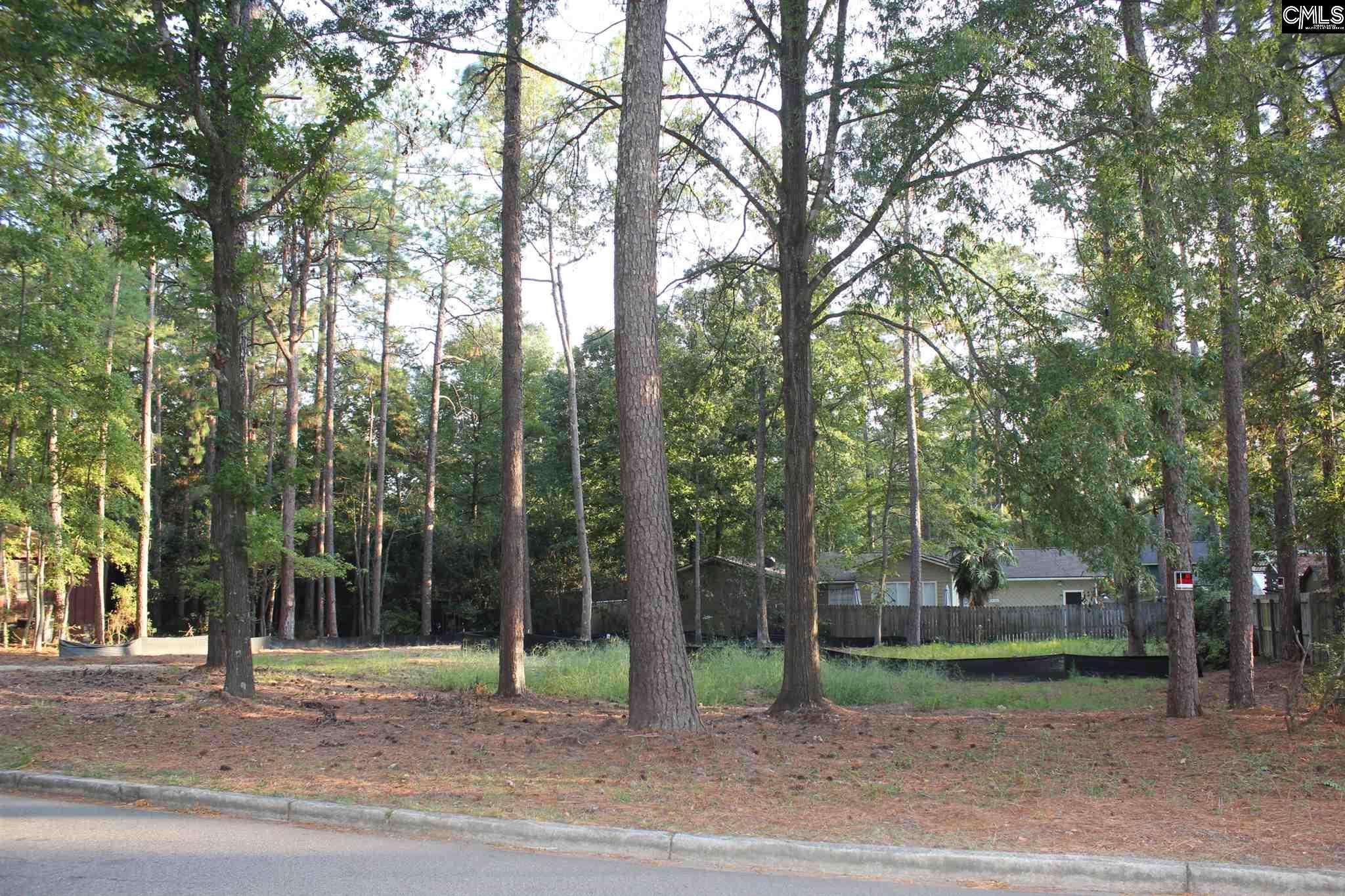 104  Tawny Branch Columbia, SC 29212-3417