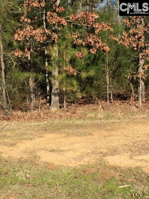 115  Mallard Watch Leesville, SC 29070