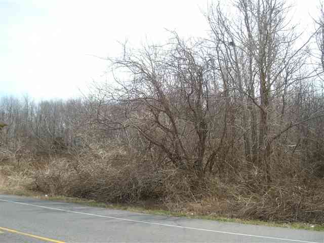 Land / Lots for Sale at 17 Bayshore Road 17 Bayshore Road Green Creek, New Jersey 08219 United States