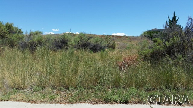3820 Horizon Glen Court, Grand Junction, CO 81506
