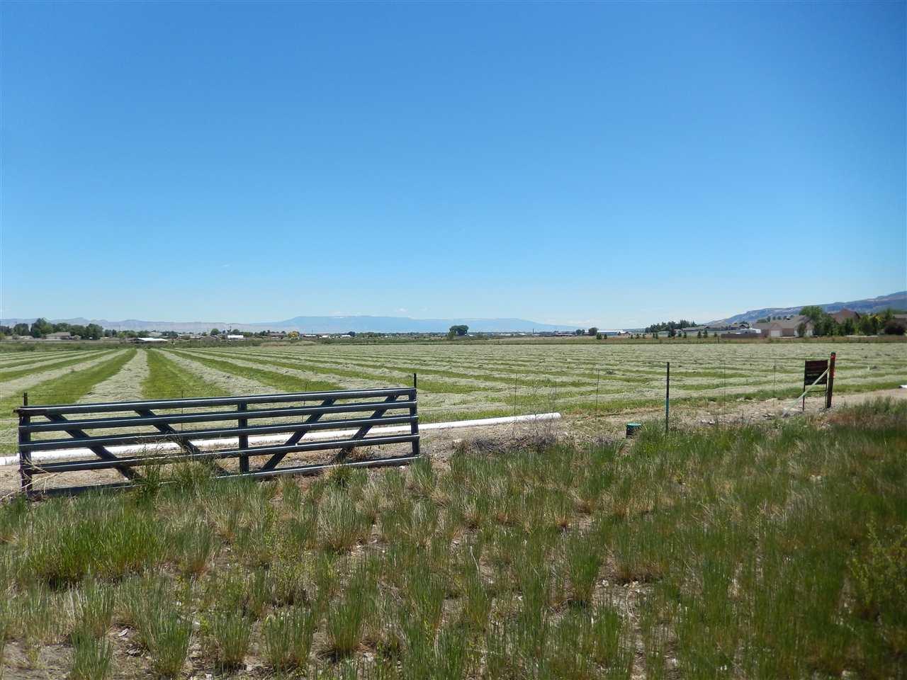 1301 M Road, Loma, CO 81524