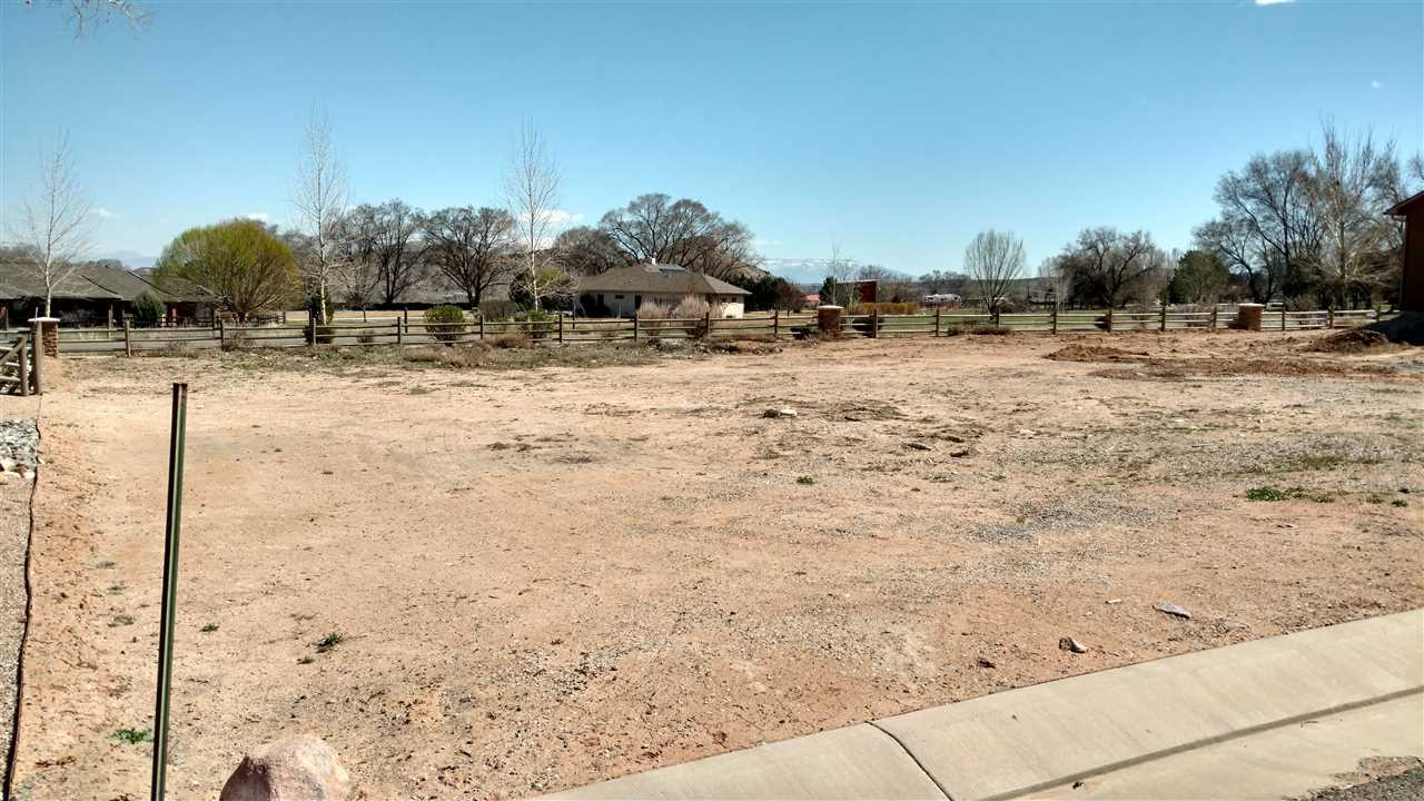 2074 Two Wood Drive, Grand Junction, CO 81507
