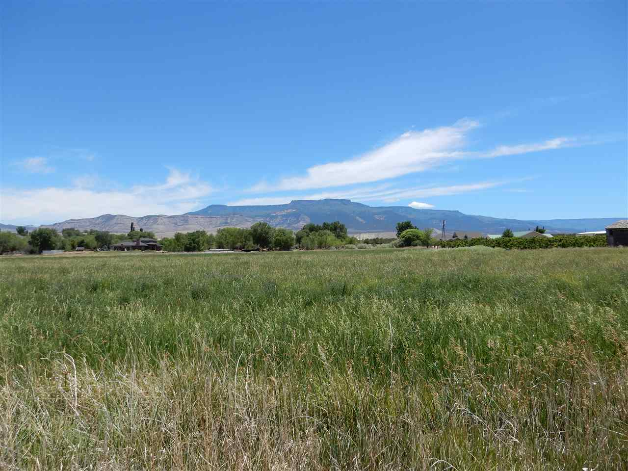 3427 D Road, Palisade, CO 81526