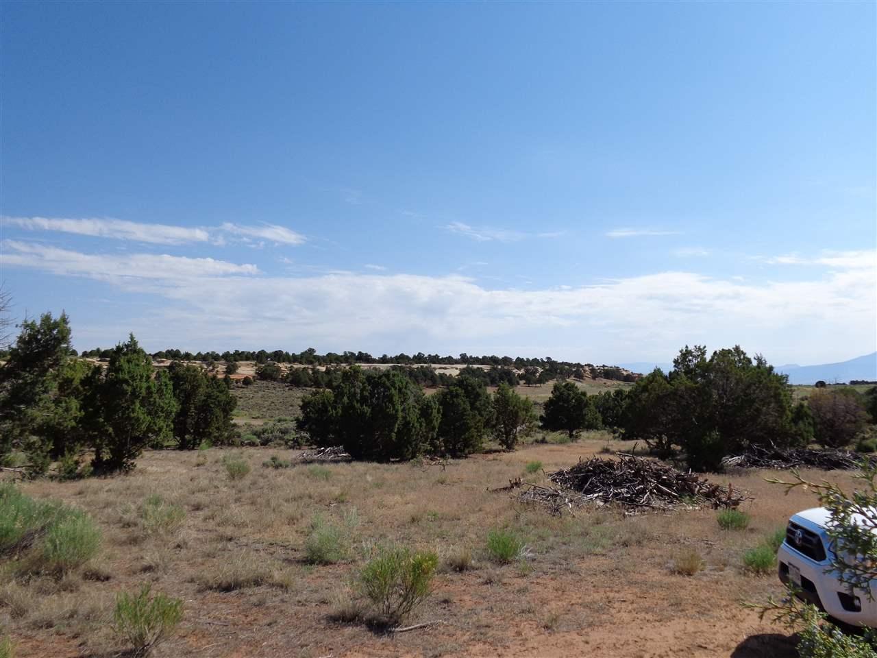 21051 Little Park Road, Grand Junction, CO 81507
