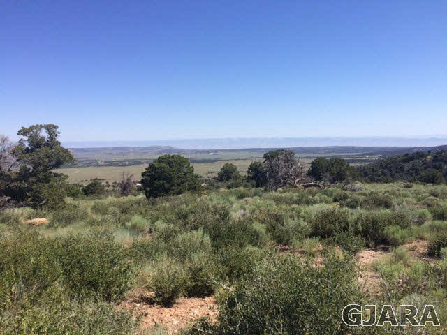 Lot #48 Eagles View Drive, Glade Park, CO 81523
