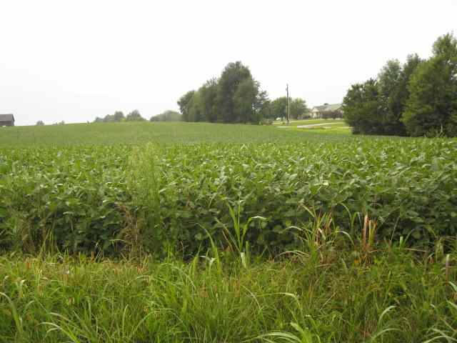 Lot 6 & 7 S Dixie Highway Cross country Farms, SONORA, KY 42776