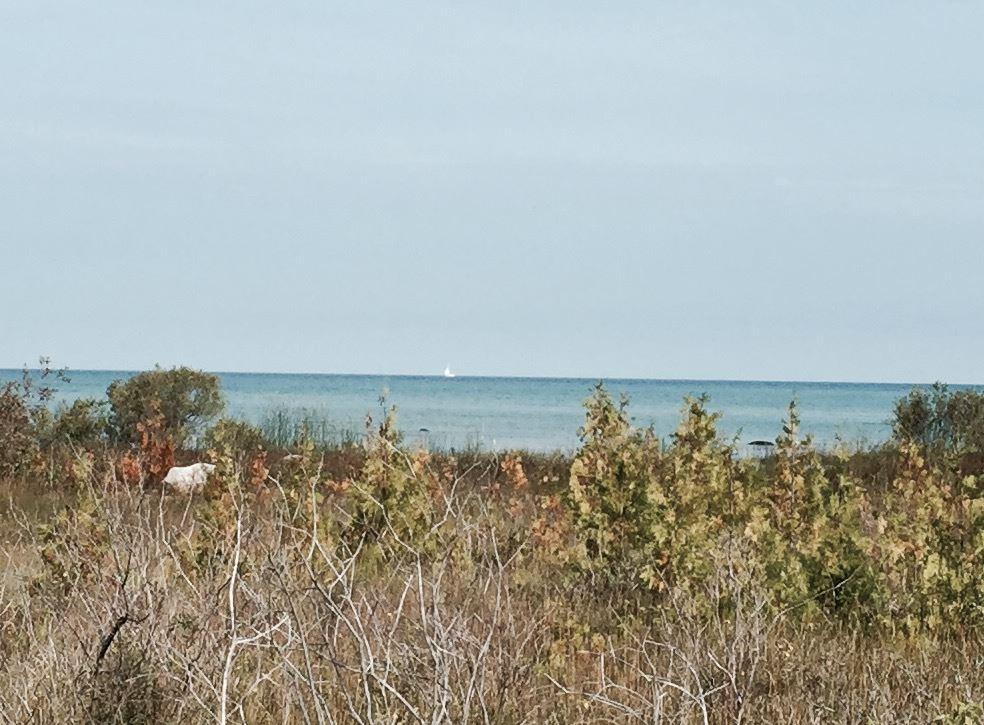 00 Lake Shore Drive, Charlevoix, MI 49720