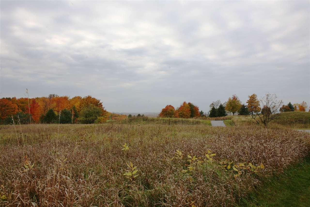 240 Crooked Tree Drive, Petoskey, MI 49770