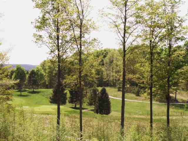 Lot # 16 Mountain Club, Boyne Falls, MI 49713