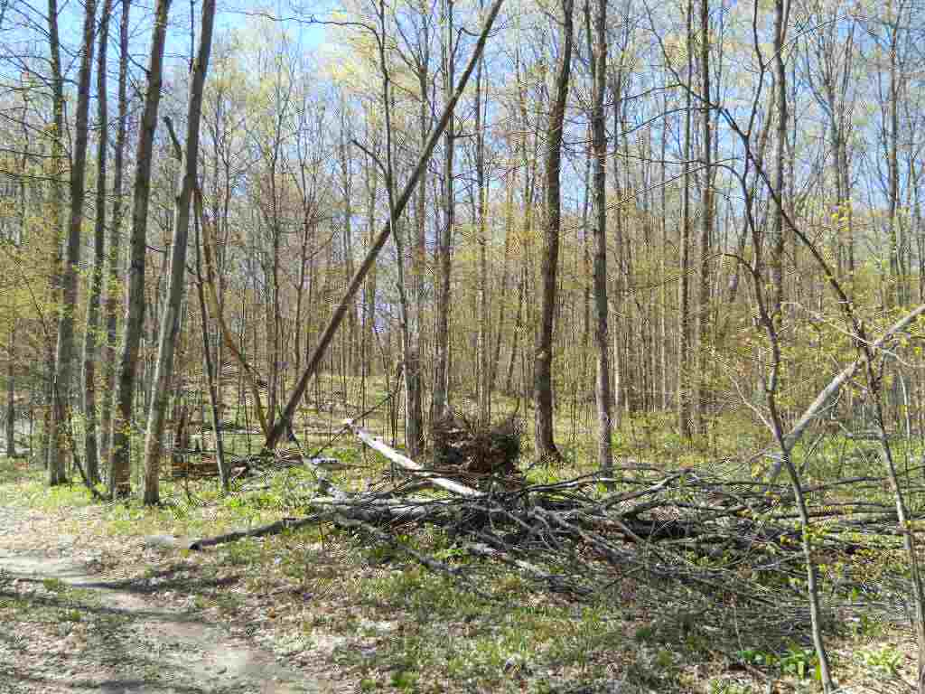 0 Timberwood Trail, Petoskey, MI 49770